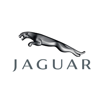 Jaguar Dash Cameras
