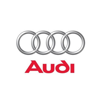 Audi Dash Cameras